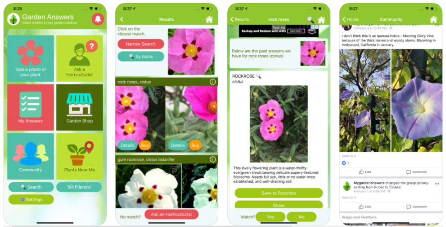 plant-identification-app